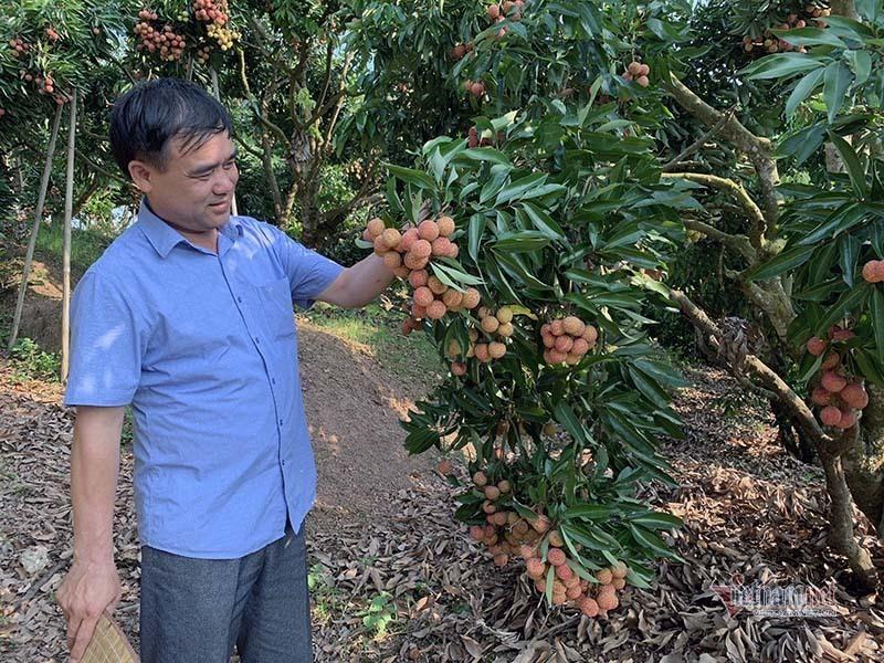 Hai 'gian hàng Việt trực tuyến' hỗ trợ Bắc Giang tiêu thụ nông sản