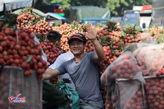 Giữa tâm dịch, Bắc Giang điều 560 đầu xe hỗ trợ tiêu thụ nông sản