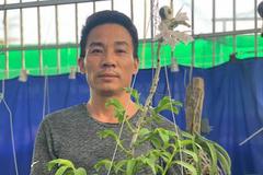 Đam mê, cẩn trọng - bí quyết chinh phục hoa lan của ông chủ vườn lan ở Hà Nội