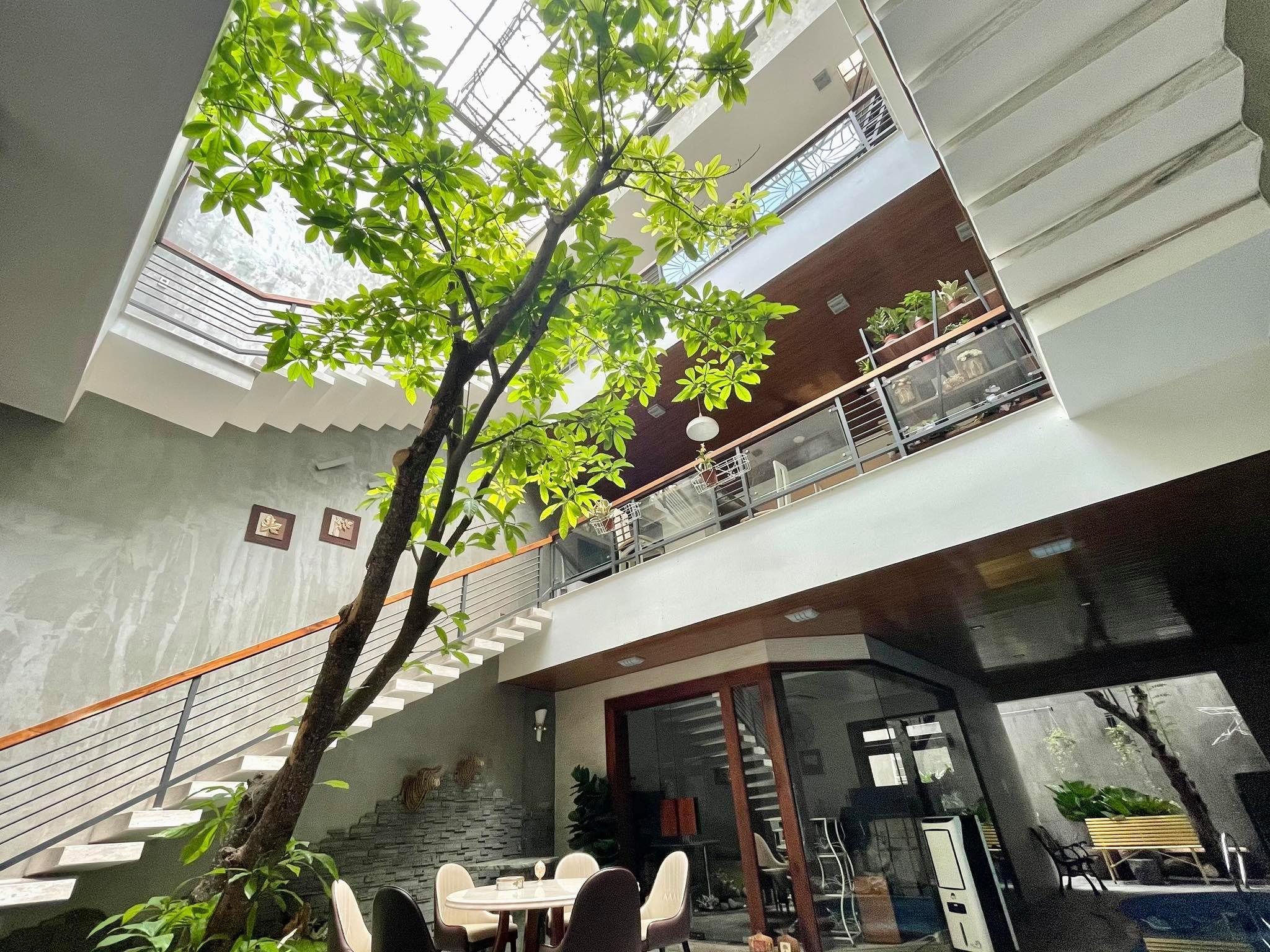 Biệt thự xây lệch tầng, phòng bếp nằm 'cheo leo' trên bể bơi ở TP.Hồ Chí Minh