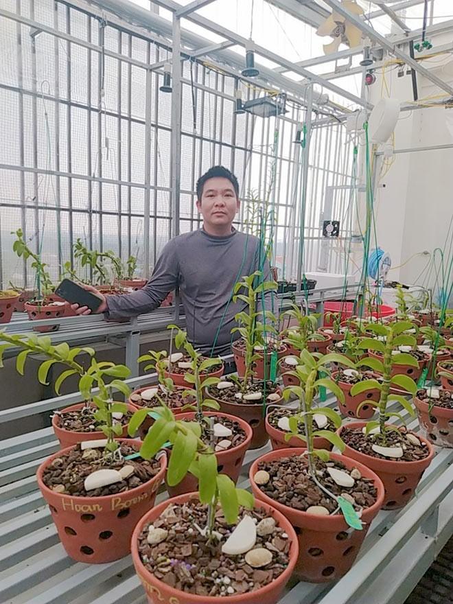 Ông chủ vườn lan Hà Thành phủ xanh một khoảng vườn trong lòng thành phố