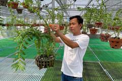 8x sở hữu vườn lan 'khủng' hơn 3000 chậu