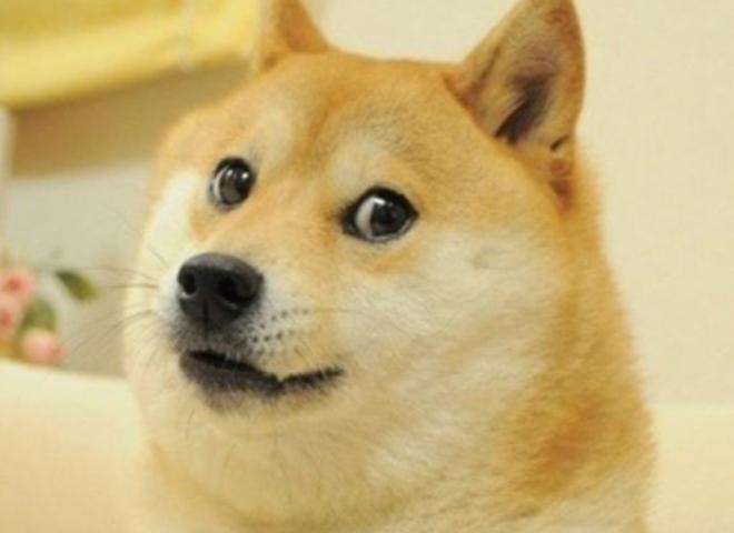 Bong bóng Dogecoin đã vỡ?