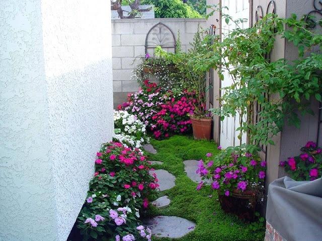 Những mẫu vườn mini cho nhà nhỏ 'xua tan' nóng bức ngày hè