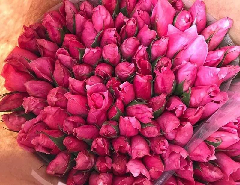 Nắng nóng thiêu đốt, hoa hồng cháy ráp, bán rẻ  như cho