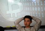 Hàn Quốc sốt tiền ảo vì giới trẻ đổ xô tìm cách làm giàu