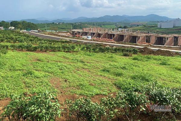Loạn đất phân lô 'gắn mác' dự án, Lâm Đồng dừng giải quyết hồ sơ tách thửa