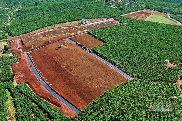 Buông lỏng quản lý đất đai, loạt cán bộ Lâm Đồng bị xem xét kỷ luật