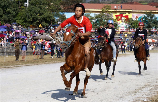 Lao Cai's traditional horse racinggets national heritage status