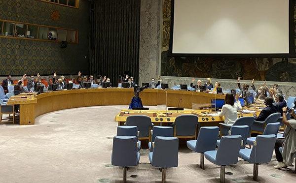 UNSC,Syria,Ambassador Pham Hai Anh