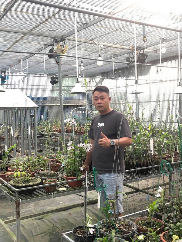Ông chủ vườn lan Lâm Đồng chia sẻ cách chăm lan cho người mới