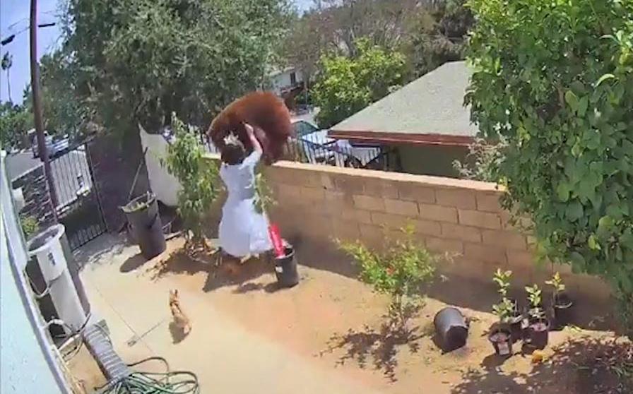 Clip tên cướp bị cô gái 'phản đòn' choáng váng nóng nhất mạng xã hội