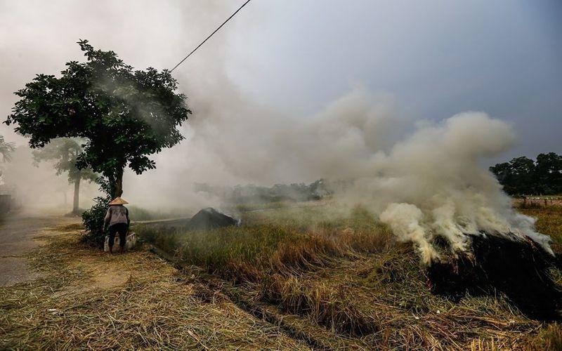 climate change,UNDP,World Environment Day,Vietnam environment