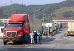 Đề nghị cấp 'hộ chiếu vắc-xin' cho lái xe chở hàng qua biên giới