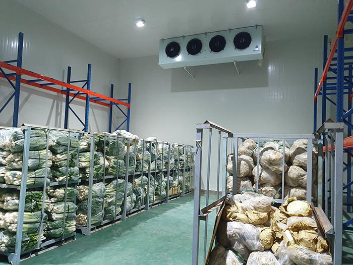 Vietnam faces shortage of cold storage warehouses