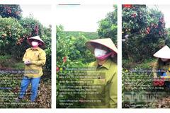 Nông dân Bắc Giang bán 8 tấn vải nhờ livestream Facebook