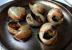 Ốc sên thành món ăn sang trọng trong nhà hàng 5 sao