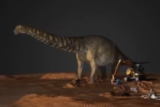 Phát hiện loài khủng long to nhất thế giới chưa từng được biết đến