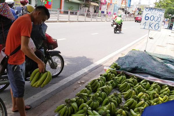 Giá chuối rớt thảm khi Trung Quốc thừa cung
