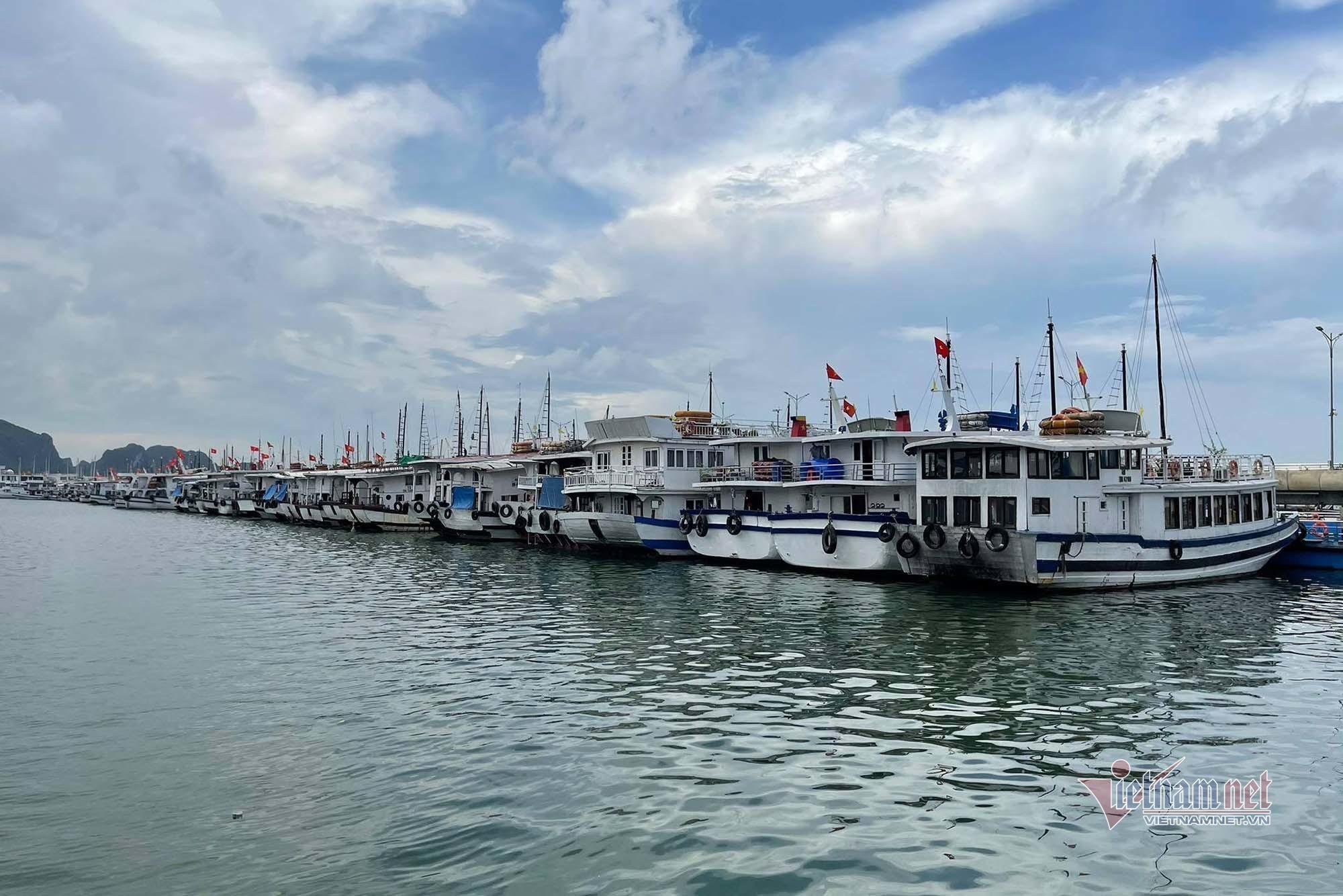 Cảnh tàu du lịch Hạ Long nằm im lìm dù được hoạt động trở lại