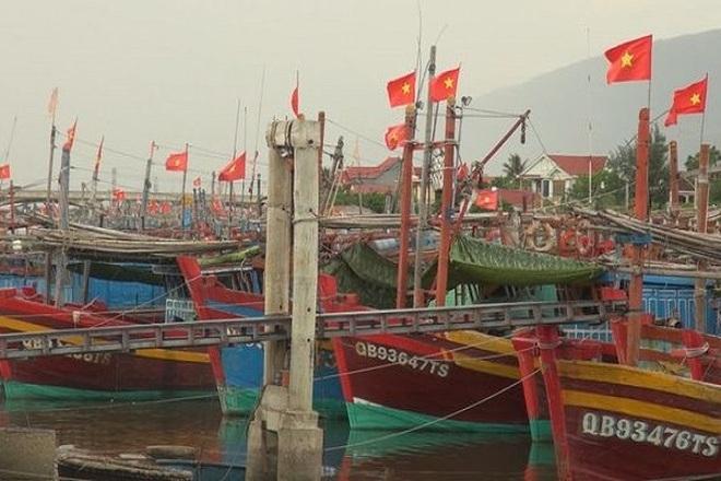 Doanh nghiệp mất tiền tỷ vì không thể xuất khẩu hải sản sang Trung Quốc