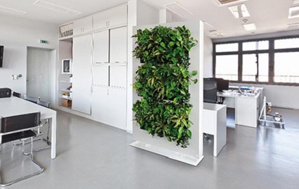 'Văn phòng xanh' - không gian làm việc tràn năng lượng