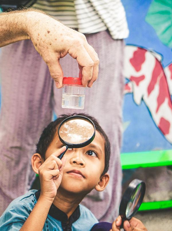 Thả muỗi để 'hạ nhiệt' dịch sốt xuất huyết ở Indonesia