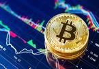 Bitcoin giảm sốc còn 29.000 USD, tiền ảo chao đảo