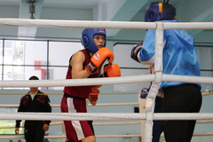 Vietnamese boxer expected to gain ticket to Tokyo Olympics