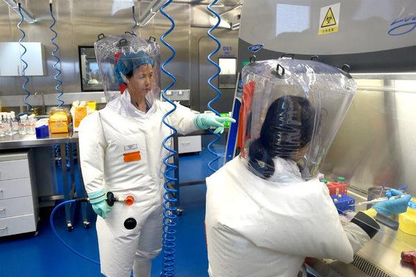 Nhà virus học ở viện Vũ Hán: 'Sao buộc tôi đưa ra bằng chứng'