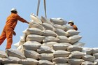 Gạo Ấn Độ giá rẻ nhập về Việt Nam tăng 'khủng' gấp 3.200 lần