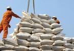 Chưa từng có: Việt Nam nhập gạo Ấn Độ tăng gấp 3.200 lần