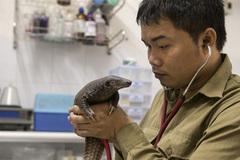 First Vietnamese wildlife conservationist receives Goldman Environmental Prize