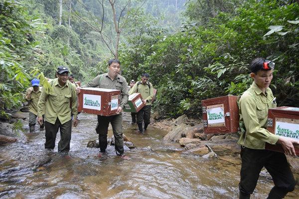 Goldman Environmental Prize,wildlife protection