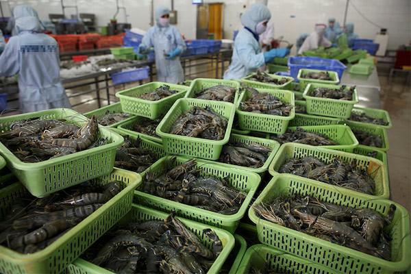 GDP của Việt Nam phải vượt mốc 500 tỷ USD