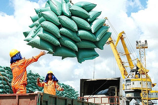 Vietnam likely to rank third in global rice exports in 2022