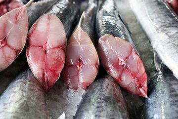 Chủ hàng hải sản mách cách chọn cá thu tươi không bị ướp đạm