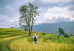 Vietnamese prefer travelling to finding a lover