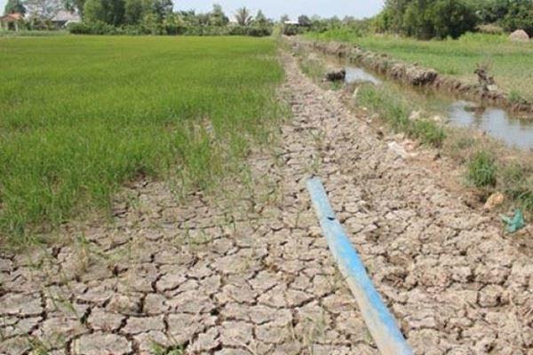 Chống sa mạc và hạn hán để thúc đẩy phát triển bền vững