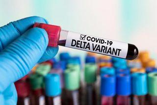 WHO cảnh báo về biến thể Delta, ca mắc Covid-19 ở Indonesia tăng vọt