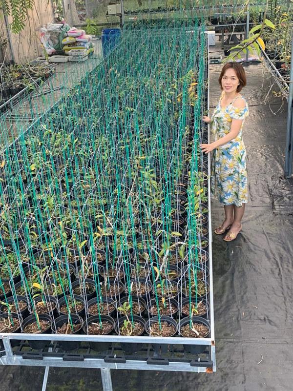 Bà chủ vườn sở hữu hàng nghìn chậu lan quý ở Bình Định