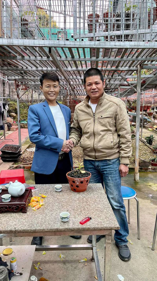 Kinh nghiệm chăm sóc hoa lan từ ông chủ vườn ở Thái Nguyên