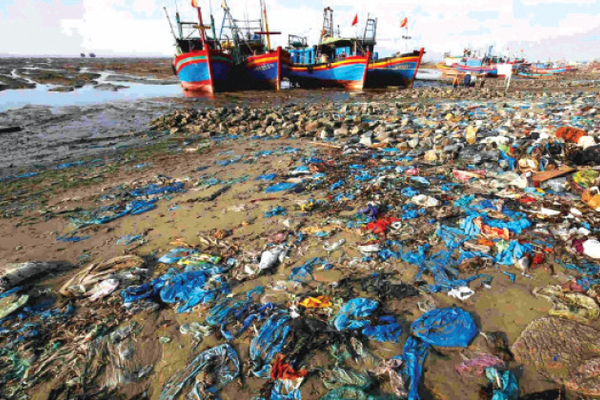 Hỗ trợ Việt Nam đẩy nhanh quá trình chuyển đổi sang nền kinh tế tuần hoàn toàn diện
