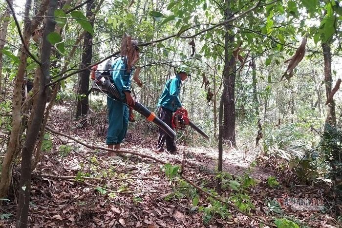 Đu bám vách đá cheo leo vào canh lửa cho rừng đặc dụng