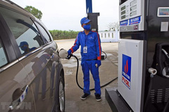 Experts support proposal to open fuel market to foreign investors