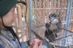 Vietnamese public support closing wildlife markets and ending deforestation