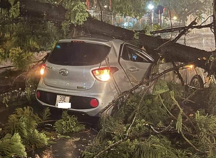 Loạt ô tô gặp tai bay vạ gió trong cơn mưa giông ở Hà Nội