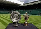 Lịch thi đấu tennis đơn nam Wimbledon 2021