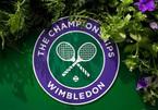 Lịch thi đấu tennis đơn nữ Wimbledon 2021