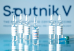 Việt Nam sắp gia công vắc xin của Nga, chuyển giao công nghệ 100 triệu liều/năm